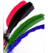 PEN QUILL SET 12 ASSORTED COLORS 11'' LONG