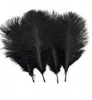 Sowder 20pcs Natural 10-12inch(25-30cm) Ostrich Feathers Plume Wedding Centerpieces Home Decoration(Black)